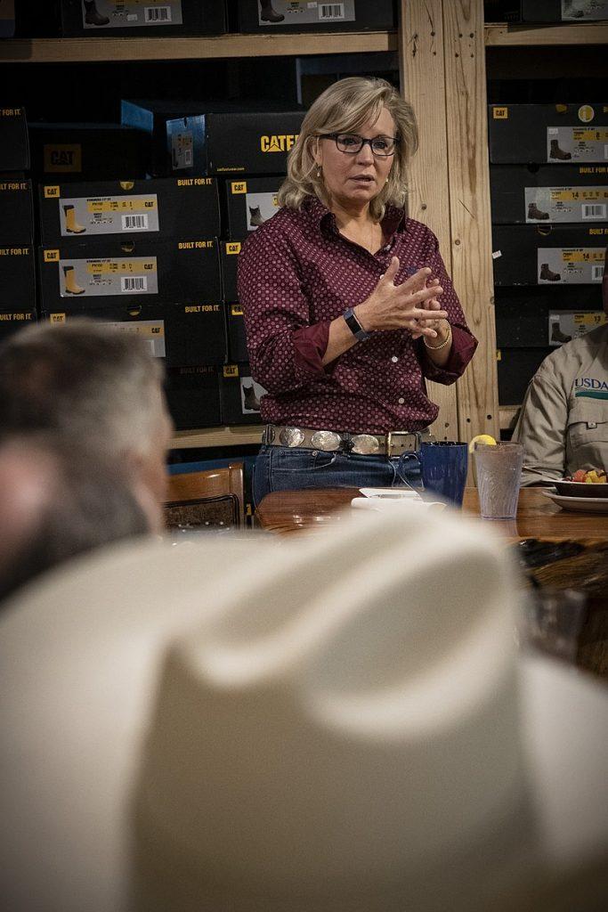 Wyoming State Legislator Chuck Gray To Challenge Rep. Liz Cheney In Republican Primary